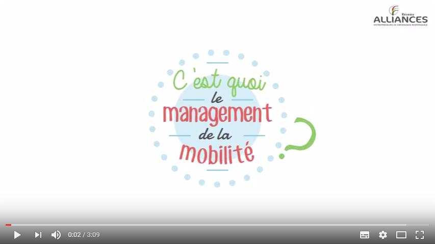 Le Management De La Mobilite Explique En Video